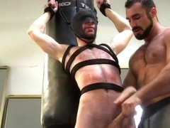 BDSM stud suspended and tugged by gym hunk